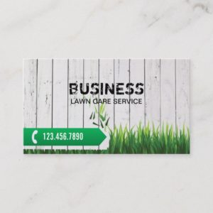 Professional Lawn Care Service Business Card